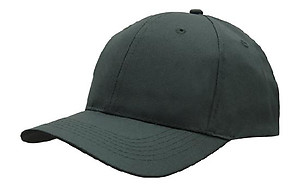 Budget 6 Panel Cotton Cap